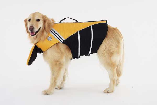 Dog Life Jacket With Chin Float