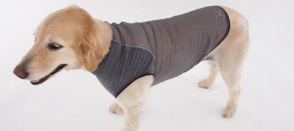 Insect Repellent Dog Clothing