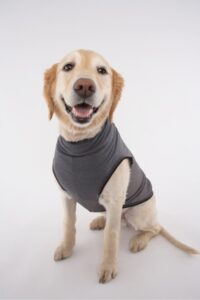 Insect Repellent Dog Shirt