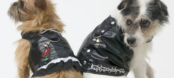 Biker Dog Clothes