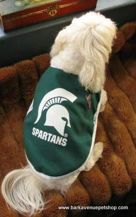 Michigan State Spartans Dog Clothes For The Big Game