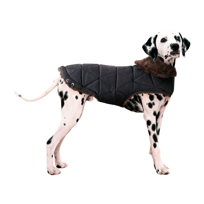Dog Coats For Winter Warmth and Furry Fashion