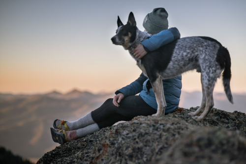 3 Ways to Decrease Anxiety for You and Your Pets