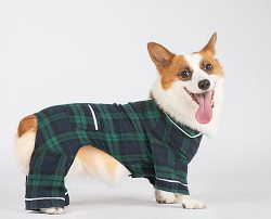 Blue And Green Flannel Plaid Dog Pajamas