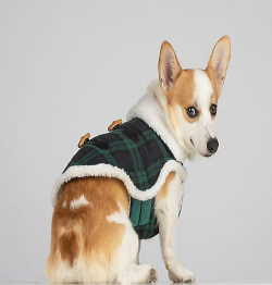 Green And Blue Plaid Sherpa Lined Dog Coat