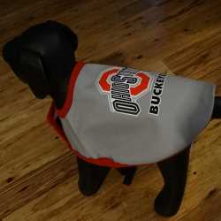 Ohio Buckeyes Dog Coat Small