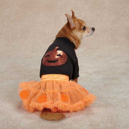 pumpkin dog costume by zack and zoey bark avenue dog boutique