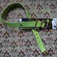 Green Dog Collar with Gold and Rhinestones