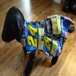 Jeff Gordon NASCAR Dog Sun Dress Size Small
