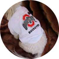 Ohio State Buckeyes Dog Tee Shirt