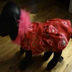 Red And Pink Valentines Day Dog Dress Small Size