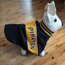 Pittsburgh Pirates Nylon Dog Coat XXS Size
