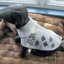 Penn State Nittany Lions Dog Coat