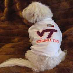 Virginia Tech Hokies Dog Tee Shirt