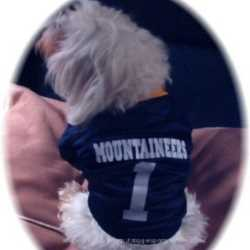 West Virginia Mountaineers Dog Jersey Medium Size