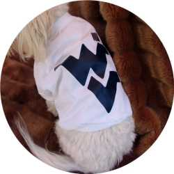 West Virginia Mountaineers Dog Tee Shirt